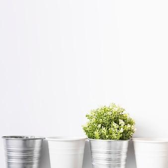 Frische wachsende anlagen im silbernen topf auf weißem hintergrund