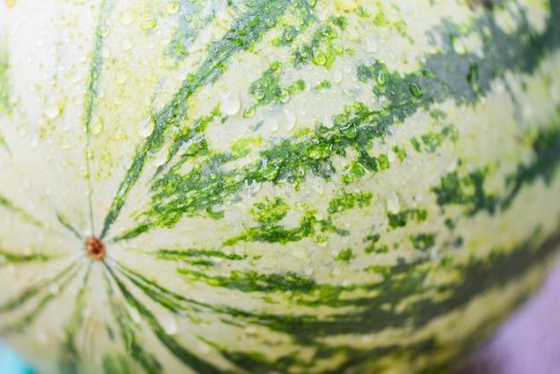 Frische wassermelone mit wassertropfen-naturhintergrund - schließen sie tropische sommerfrucht der wassermelonenhaut