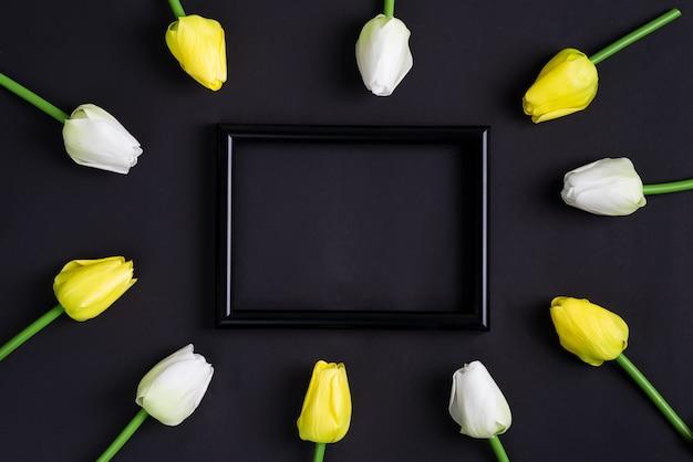 Frische weiße und gelbe tulpenblumen mit schwarzem fotorahmen auf einem schwarzen hintergrund. draufsicht.