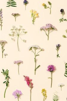 Frische wiesenblumen und gras der draufsicht auf natürlichem muster des hellrosa farbhintergrundes