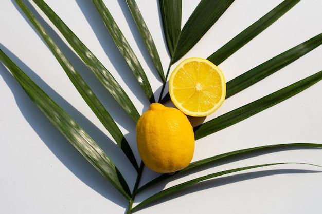 Frische zitrone auf palmenblatt auf weißem hintergrund.
