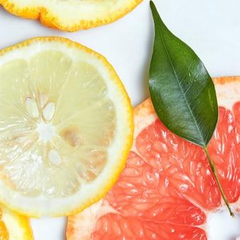 Frische zitrusfruchtscheiben und blatt
