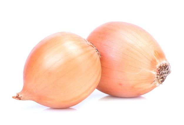 Frische zwiebel