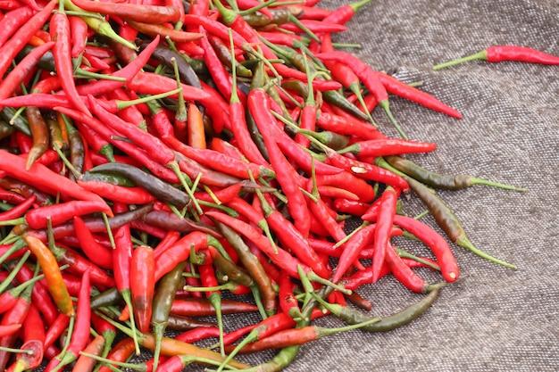Frischer chili