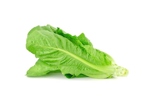 Frischer cos-salat auf weißem hintergrund