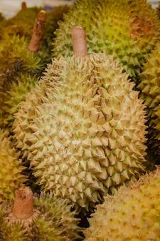 Frischer durian auf baum im obstgarten.