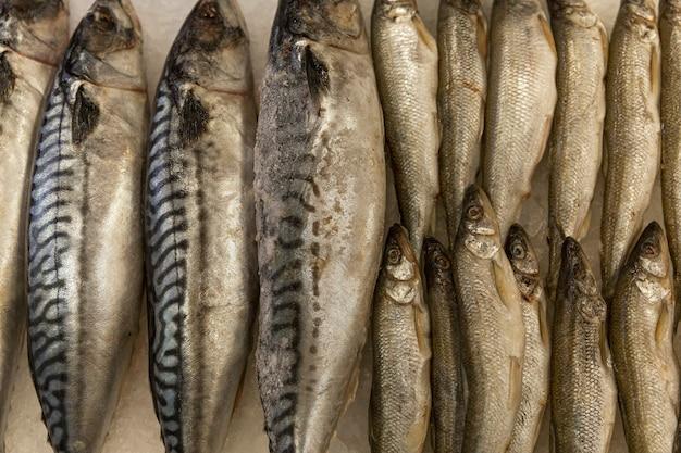 Frischer fisch auf eis im laden. gesunde ernährung. nahaufnahme.