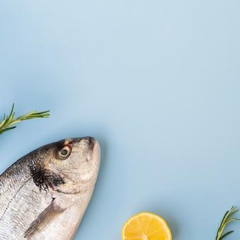 Frischer fisch der draufsicht mit kräutern und kopieraum