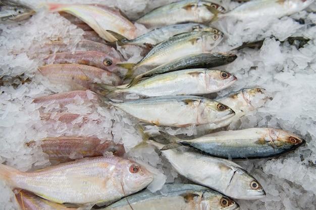 Frischer fisch im markt