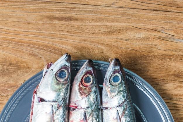 Frischer fisch makrele