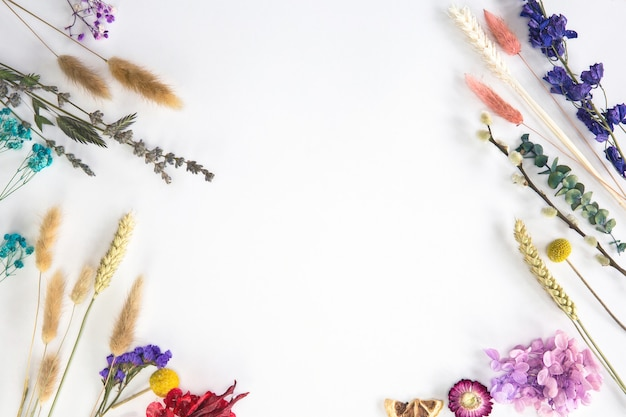 Frischer, frühlingsgetrockneter blumenrahmen isoliert auf weißem hintergrund mit kopienraum romanticsummer modernes konzept flach oben ansichtsraum für text legen