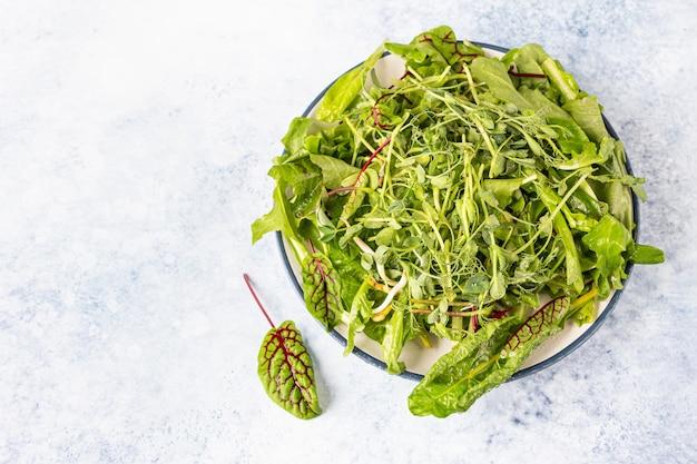 Frischer grüner gemischter salat mit mikrogrün mit wassertropfen auf einem teller