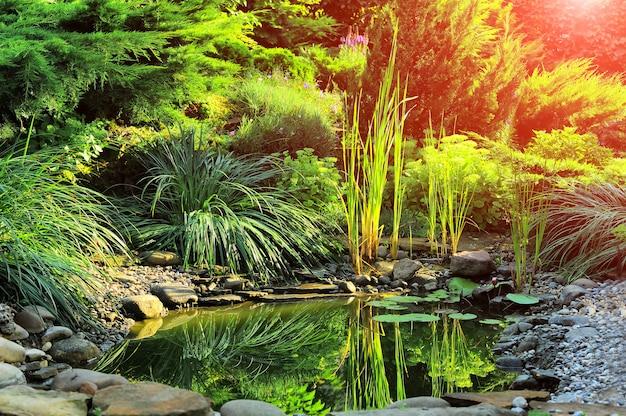 Frischer grüner rasen im sonnenlicht, landschaftsgestaltung im garten