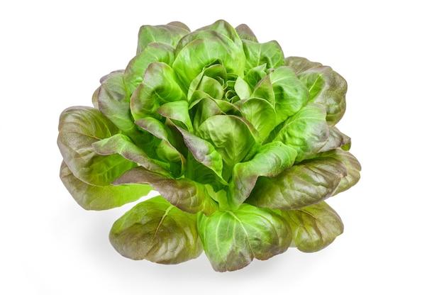 Frischer grüner salat lokalisiert auf weißem ausschnitt.
