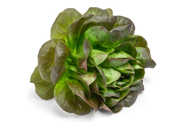 Frischer grüner salat lokalisiert auf weißem hintergrundausschnitt.