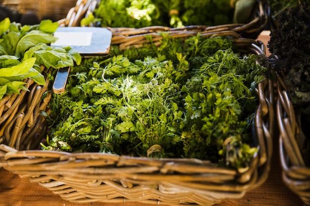 Frischer koriander im weidenkorb für verkauf am supermarkt