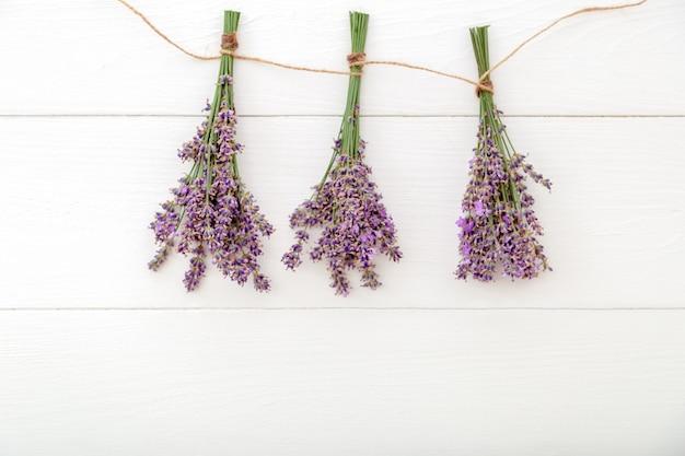 Frischer lavendelblumenstrauß mit purpurrotem band auf farbhintergrund. platz für text. flatlay kräuterblüte. lavendel aromatherapie. rosa hintergrund. langes webbanner mit kopienraum.