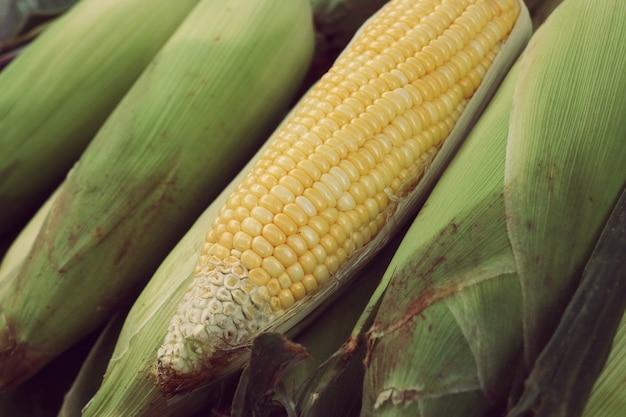 Frischer mais am markt