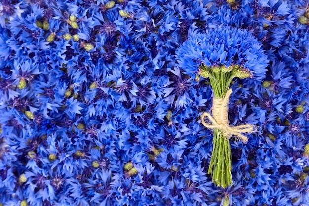 Frischer natürlicher kornblumenstrauß auf blauen blumen