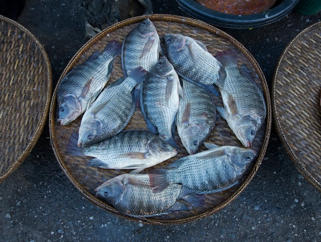 Frischer nil fisch am straßenmarkt