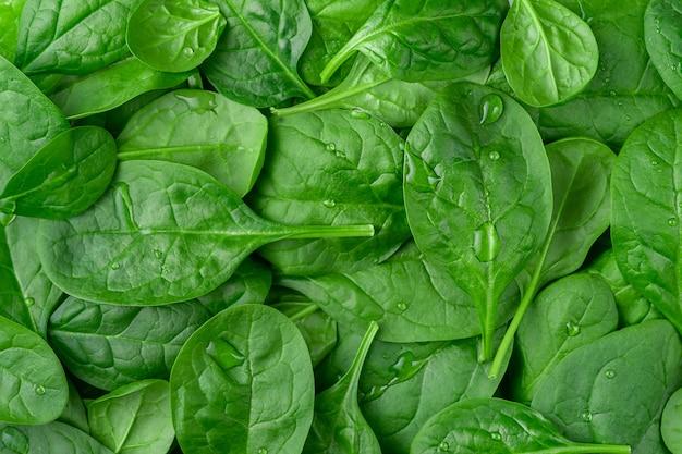 Frischer organischer spinathintergrund. gesunde ernährung, ansicht von oben.