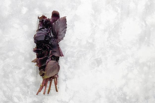 Frischer purpurroter basilikum in den plastikkästen auf grauem beton