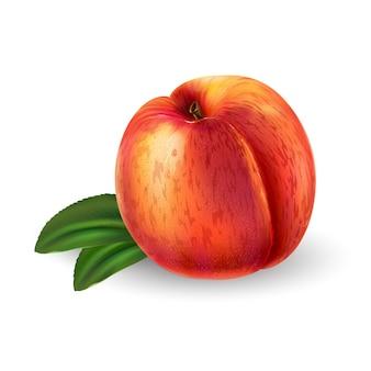 Frischer reifer pfirsich - gesundes lebensmitteldesign. realistische stilillustration.