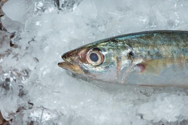 Frischer roher fisch auf eis auf einem holztisch.