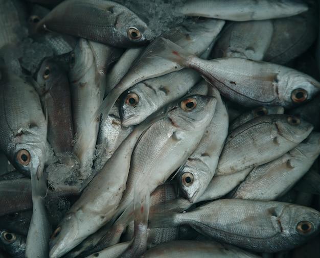 Frischer roher fisch im markt