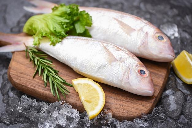 Frischer roher fisch mit zutaten
