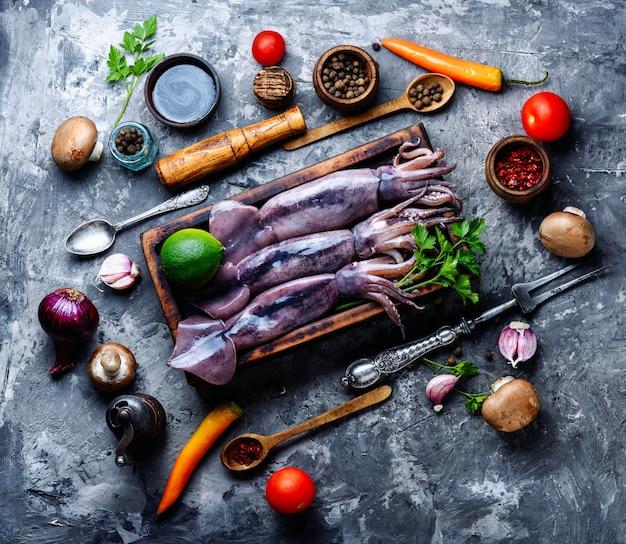 Frischer roher tintenfisch