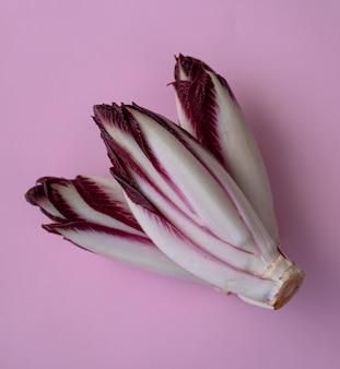 Frischer roter chicorée auf einem rosa hintergrund