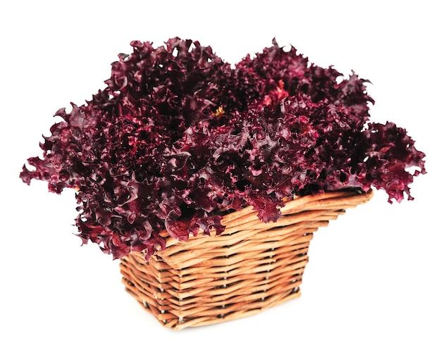 Frischer roter salat auf weiß
