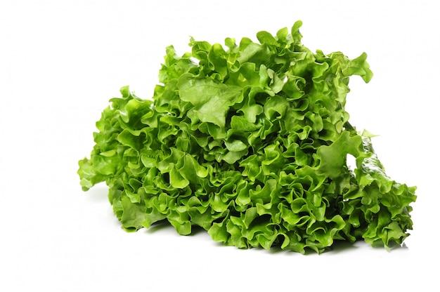 Frischer salat isoliert