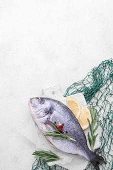 Frischer seebrassenfisch und grünes fischnetz