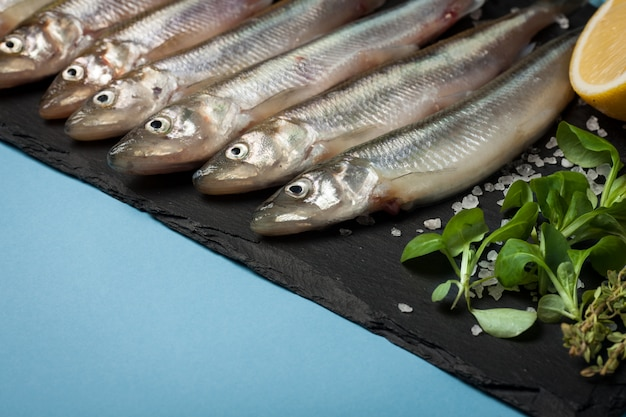 Frischer seefisch roch oder sardinen.