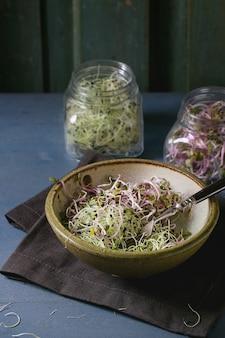 Frischer sprossen-salat