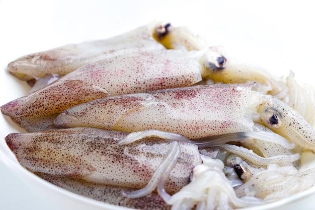 Frischer tintenfisch in der platte: bestandteil von meeresfrüchten.