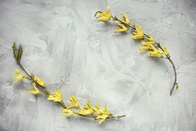 Frischer zweig mit gelben blüten auf grauem hintergrund