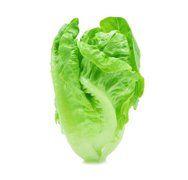 Frisches baby cos (salat) auf weißem hintergrund