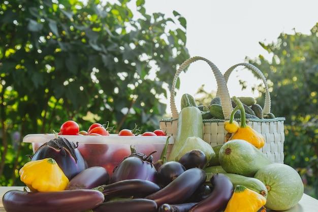 Frisches bio-gemüse und obst in einem korb auf einem tisch im garten. gesunde ernährung auberginen, kürbis, gurken, tomaten, zucchini. gemüse auf dem salat.
