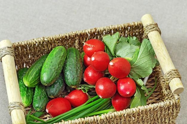 Frisches gemüse für gemüsesalat. leckere radieschen, gurken, frühlingszwiebeln im karton. organische produkte. kopieren sie platz.