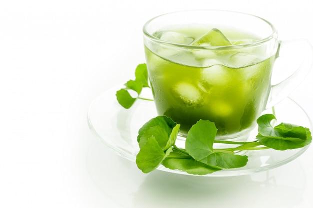 Frisches grünes gotu kola, centella asiatica blatt und saft auf weiß