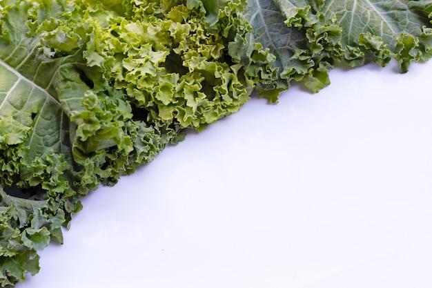 Frisches grünkohlblatt-salatgemüse