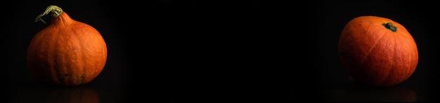 Frisches herbst-hokkaido-kürbis-banner, schwarzer hintergrund, kopienraumfoto