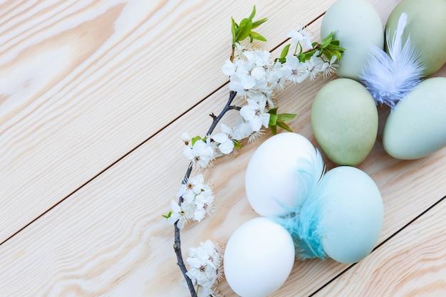 Frisches hühnerbunte eier und kirschblüten auf weißem hölzernem hintergrund