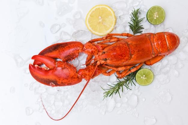 Frisches hummeressen auf weißem tellerhintergrund, meeresfrüchte des roten hummeressens mit kräutergewürzen
