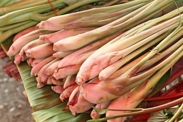 Frisches zitronengras am markt