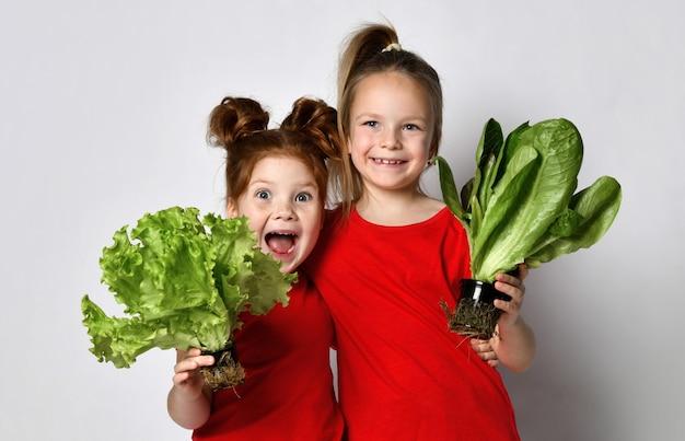 Fröhlich lächelnde mädchen halten der kamera zwei verschiedene arten von frischen salatblättern entgegen. mädchen posiert auf grauem hintergrund im studio. konzept der gesunden ernährung für kinder und positive emotionen.