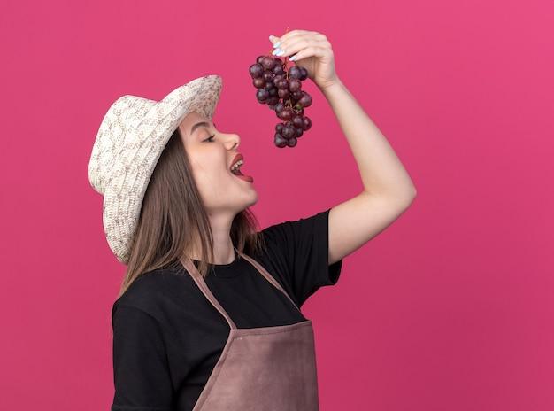Fröhliche hübsche kaukasische gärtnerin mit gartenhut, die vorgibt, weintraube zu essen?